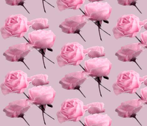 Drifting Roses