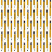 No. 2 Pencil*