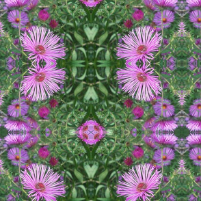 Purple_Floral_Fun