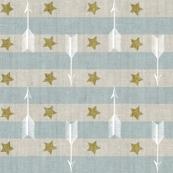 Stars + Stripes