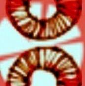 Batik Rings