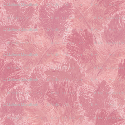 Ostrich Feather - large_rose