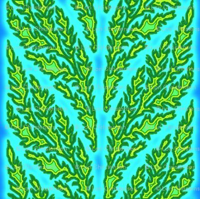 seaweed sunshine