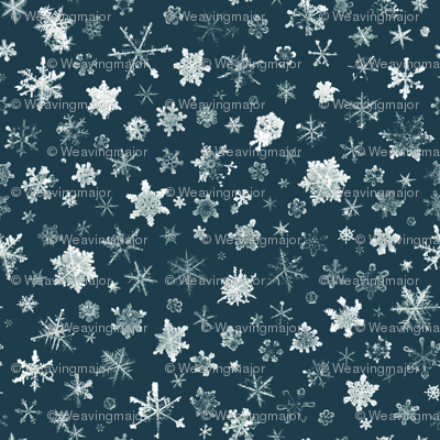 Retro Skiing Snowflakes