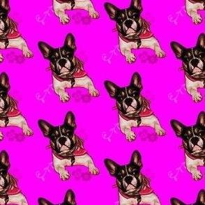 Bulldogge_Bolzplatzrocker_Nele_pink-comic