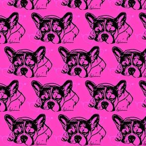 Bulldog Nele Bolzplatzrocker sleep pink