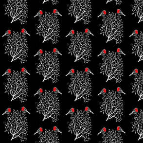 Two Robins Red and Snow white Tree