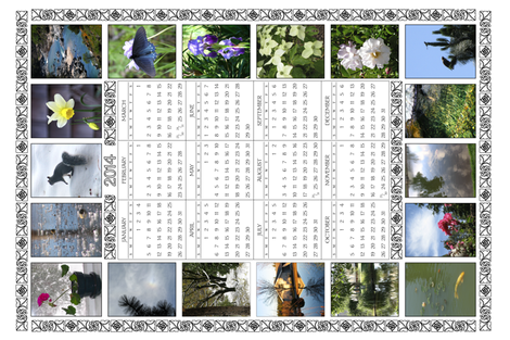 2014 Teatowel Photo Calendar fabric by mina on Spoonflower - custom fabric