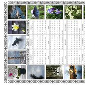Rr2014-teatowel-cal-1b-white-expand-200res_shop_thumb