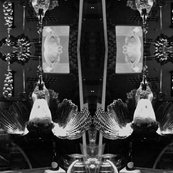 Rrrrfilm_noir_hanging_bird_shop_thumb