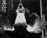 Rrrrfilm_noir_hanging_bird_thumb