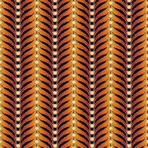 featherstripe tan red gold