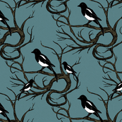 magpies_in_the_briar