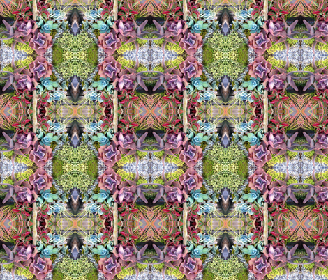 colourful succulent garden fabric by kerisadenison on Spoonflower - custom fabric