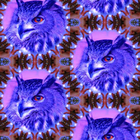 Owl of the Irish Moon