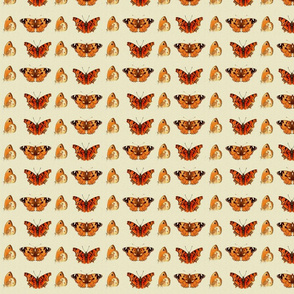 ButterflyFabric1small