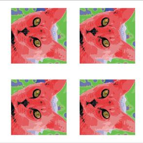Red cat grid