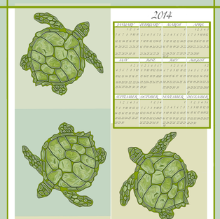 2014TeaTowelTurtles fabric by luv2silkpaint on Spoonflower - custom fabric