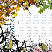 Tit calendar