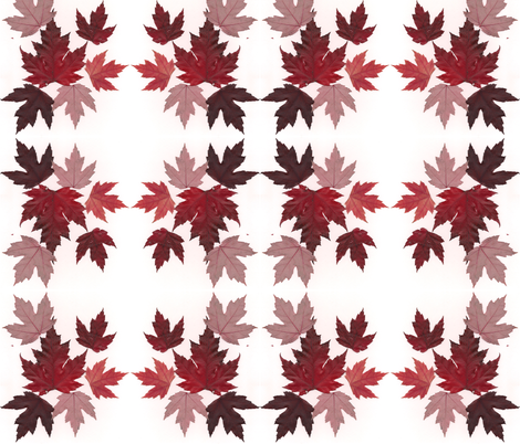 Fall Into  fabric by erniekocats on Spoonflower - custom fabric