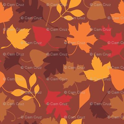 leaves everywhere!