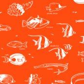 Rrtropicalfish1b_shop_thumb