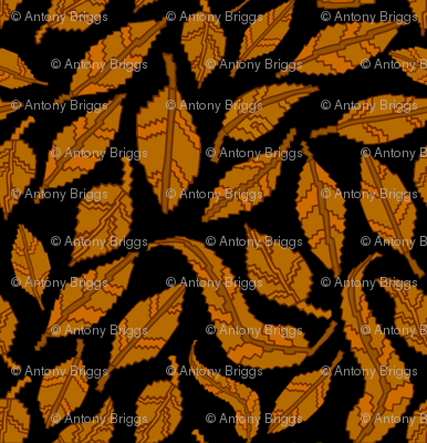 Autumn-leaves-on_black_preview