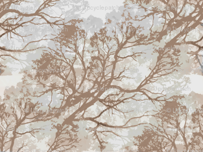 Tree_Branches_Brown