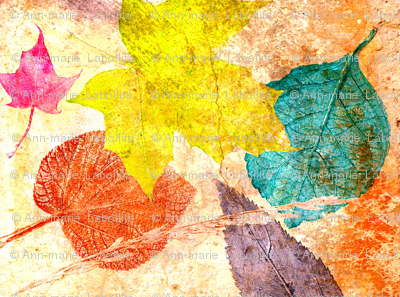 leaves on my walk
