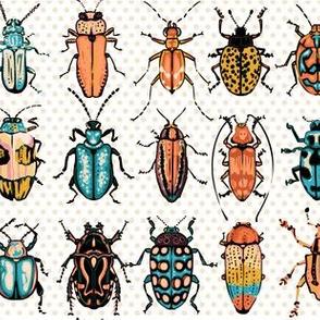 Beetles - orange turquoise