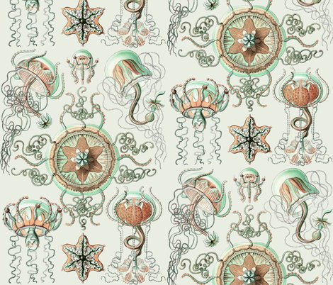 Rrhaeckel_trachomedusae_jellyfish_2_-_1904_shop_preview