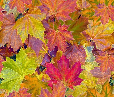 Fantastic Fall Leaves fabric by koalalady on Spoonflower - custom fabric