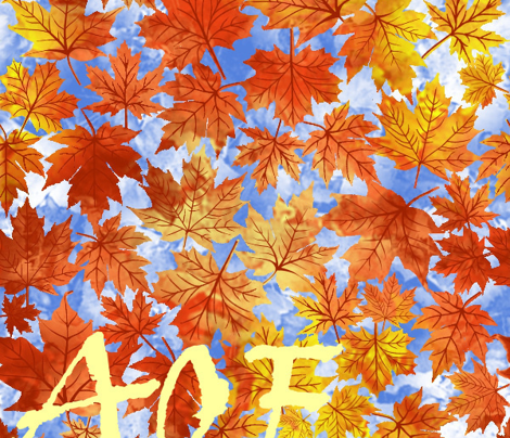 Rfalling_autumn_leaves__comment_376050_preview