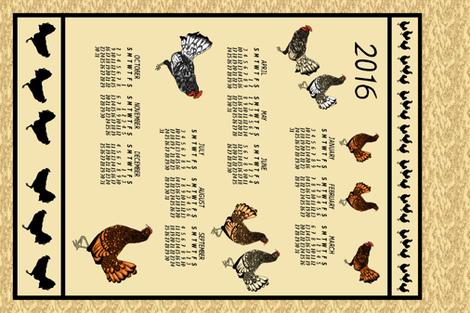 Chickens Everywhere- 2016 plainbackground Eb1 hr