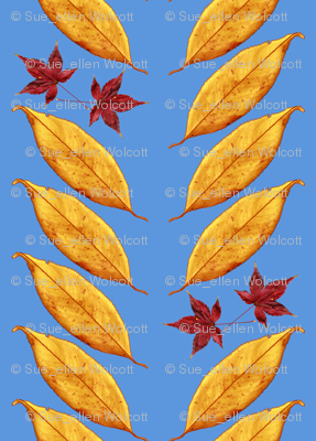 Weeping Cherry & Japanese Maple Leaves on October Sky Blue