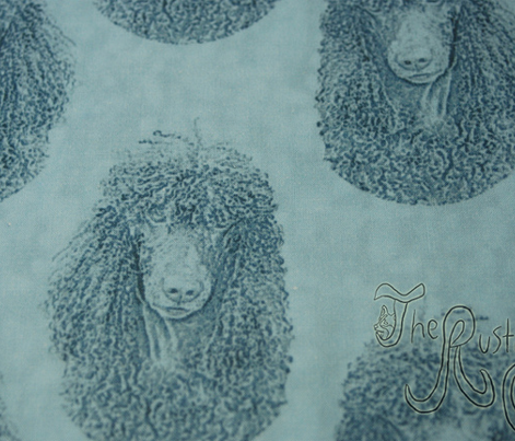 Irish Water Spaniel faces - blue