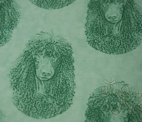 Irish Water Spaniel faces - green