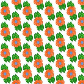 Open rose garden large orange