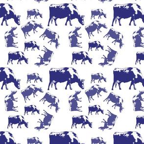 buffalo_in_blue