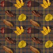 Rrleaves_tartan_darkv2_shop_thumb