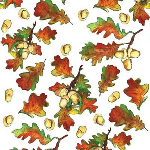 Autumn leaves fall with acrons