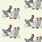 spring chickens on eggshell white