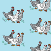 spring chickens on light teal blue