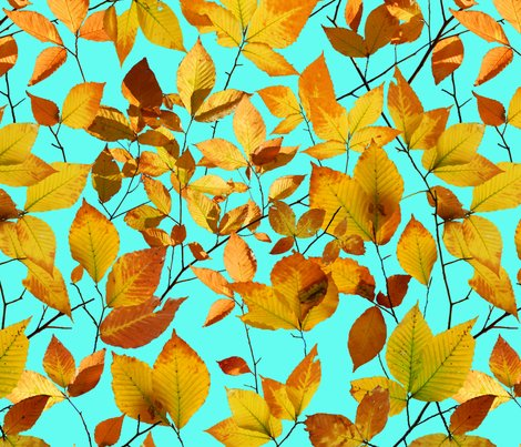 Patricia-shea-autumn-leaves-photographic_shop_preview