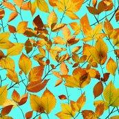 Patricia-shea-autumn-leaves-photographic_shop_thumb