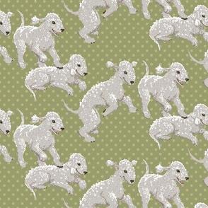 Bedlington Terriers Fabric