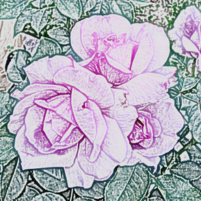 Purple Rose Pencil Sketch