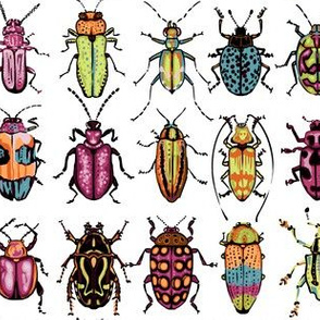 Beetle Row - magenta - no dots