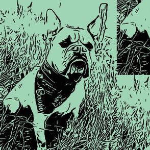 Bolzplatzrocker_Bulldog_Bruno-ch-ch-ch