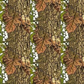 Climbing Autum Oak Leaves